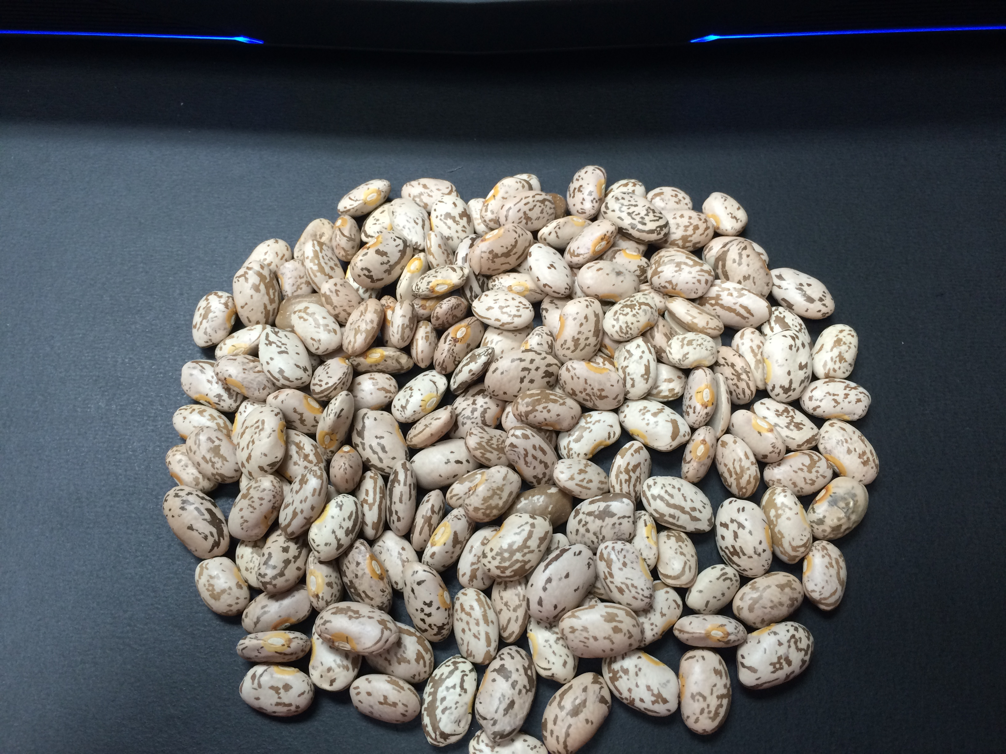 how to cook dry pinto beans